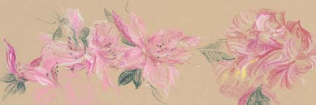 drawings of azaleas